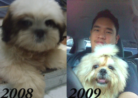 Rocco Then and Now